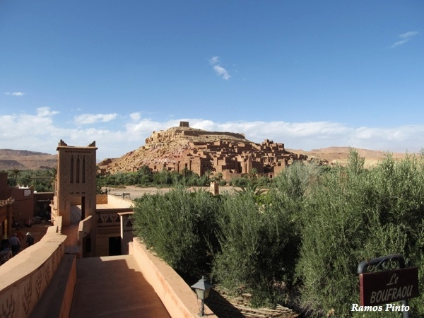 O Meu Zoom...de Marrocos, em 2014 - Página 2 12285b2a-839f-41df-a632-c10d66051149_zps18bb30e2