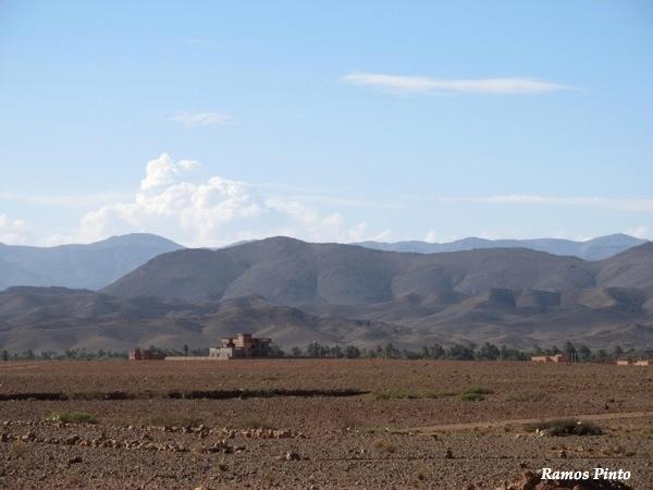 O Meu Zoom...de Marrocos, em 2014 - Página 2 17b2f43b-8693-42a3-8451-1ad94a43e7ba_zps3d202127
