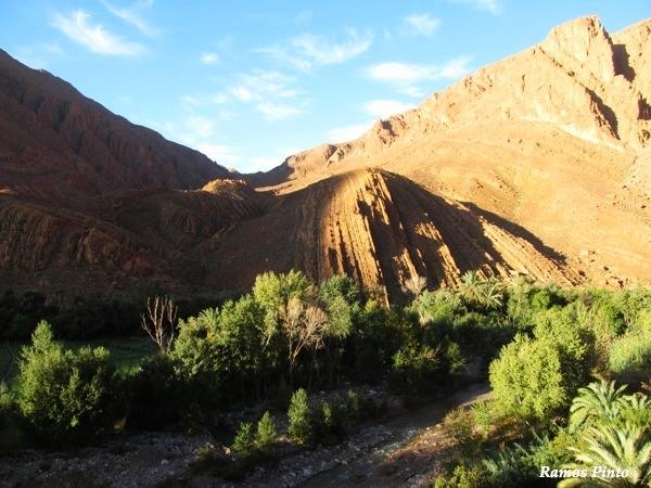 O Meu Zoom...de Marrocos, em 2014 - Página 2 192da400-11ec-4c18-af65-9e0ebd26770e_zps478367fa