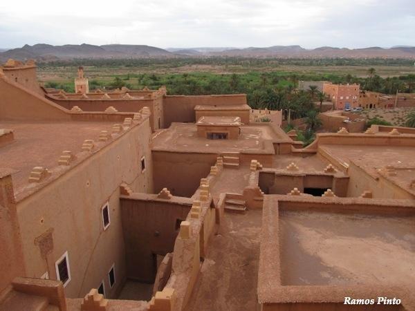 O Meu Zoom...de Marrocos, em 2014 - Página 2 1a966073-f2fb-45d7-8504-ca7509cf71ac_zps36e6d389