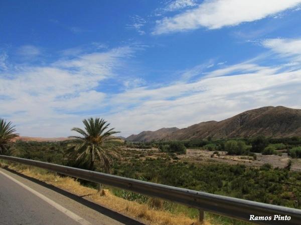 O Meu Zoom...de Marrocos, em 2014 - Página 2 1cc4adde-4f69-4cd6-b3fb-08cfb581e5a1_zps88971bb5