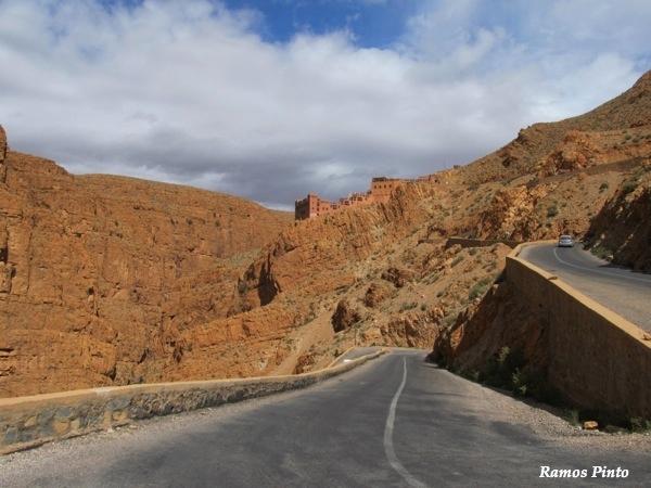O Meu Zoom...de Marrocos, em 2014 - Página 2 21a174bf-d322-43f1-938e-21401d29f3a2_zpsa5fc3b37
