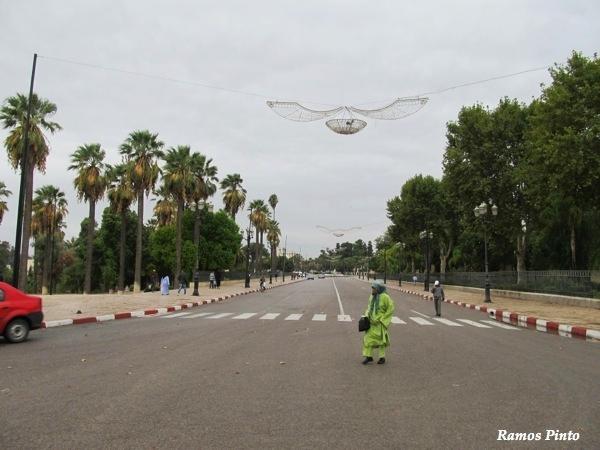 O Meu Zoom...de Marrocos, em 2014 - Página 2 247a97ab-e613-4c41-917c-515e6e240c8a_zpsd21099e5
