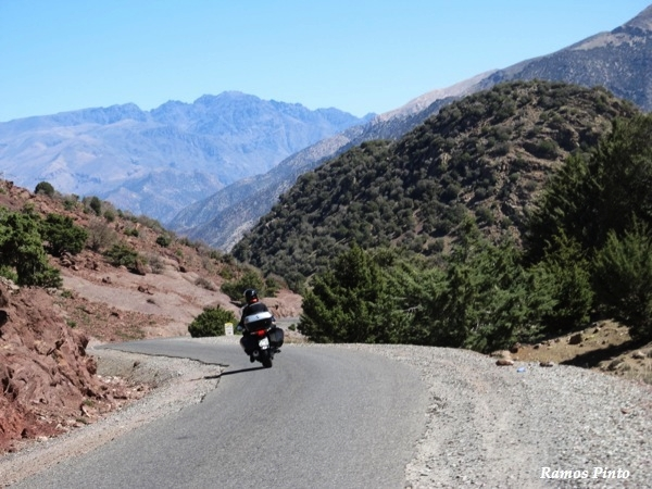 O Meu Zoom...de Marrocos, em 2014 - Página 2 265129d3-3386-4949-a9e8-7ce6e8e01b31_zps90cb668a
