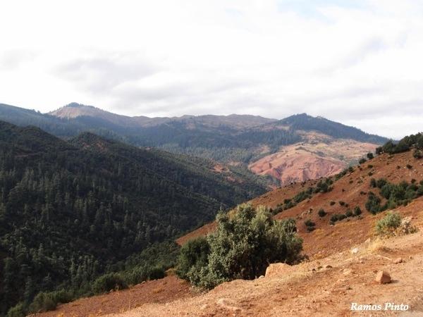 O Meu Zoom...de Marrocos, em 2014 - Página 2 26e8372e-d96d-4385-9084-28595bb5819d_zps19fc025a