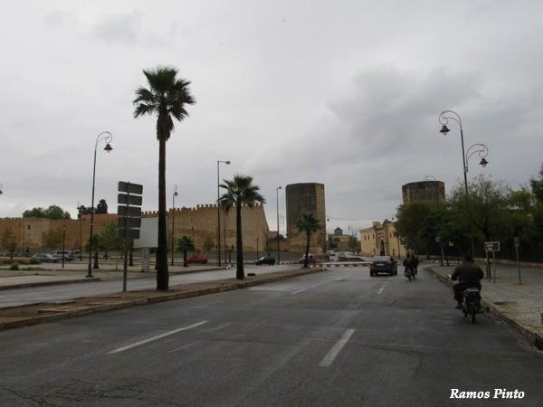 O Meu Zoom...de Marrocos, em 2014 - Página 2 2dc6d3e7-3768-4819-a22a-0eec4c0b87c8_zps7f3d0743