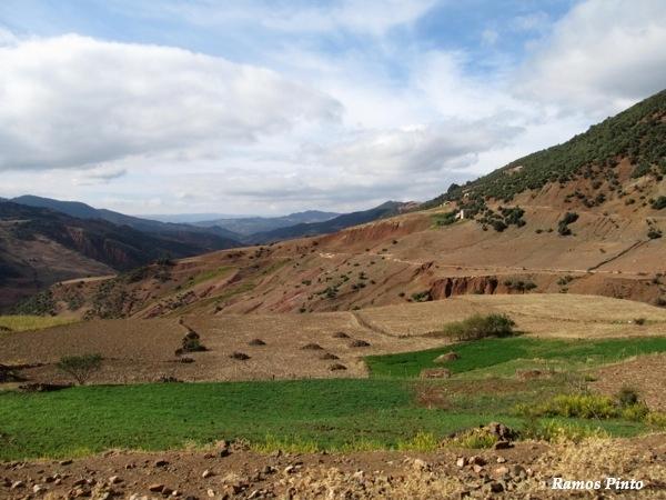 O Meu Zoom...de Marrocos, em 2014 - Página 2 326a7b94-5238-4a87-b898-03b5329843f1_zpsd5e5a771