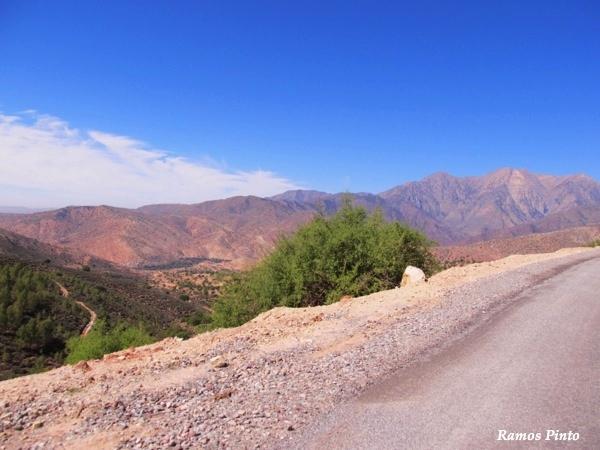 O Meu Zoom...de Marrocos, em 2014 - Página 2 392902bf-ec19-4ddf-a1a3-973c924a00b0_zps31c95a4a