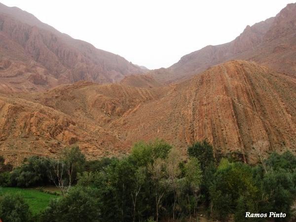O Meu Zoom...de Marrocos, em 2014 - Página 2 39cbab56-8859-43cf-83cd-a46fd4883655_zpsce70496e