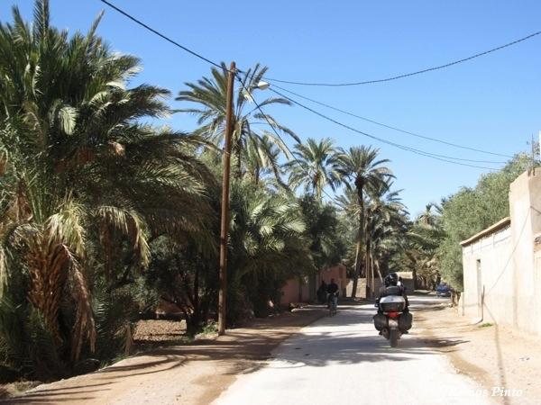O Meu Zoom...de Marrocos, em 2014 - Página 2 450b57d6-90d5-432f-8d1a-2012ea6b8602_zps244011c2