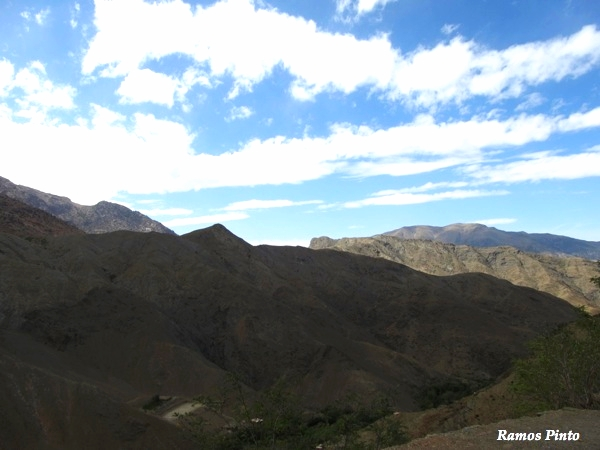 O Meu Zoom...de Marrocos, em 2014 - Página 2 464278ad-c4a1-422a-b38b-f91bef0ad1ba_zps66f6b7b9