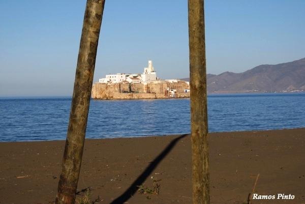 O Meu Zoom...de Marrocos, em 2014 - Página 2 49a2e068-b54e-40a0-8db9-3b06ab538cfc_zpseed286d7
