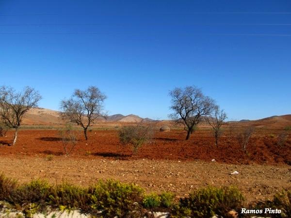 O Meu Zoom...de Marrocos, em 2014 - Página 2 51aaaae0-b18d-4304-bf05-fe9316fc4341_zps63ab40b8