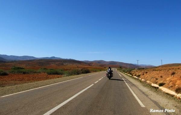 O Meu Zoom...de Marrocos, em 2014 - Página 2 5bff01d1-c762-4824-a78e-402a28b8c47d_zpsb5715a97