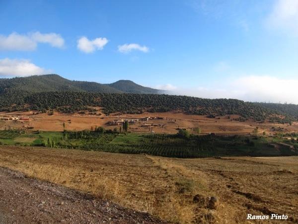 O Meu Zoom...de Marrocos, em 2014 - Página 2 64a4fc73-48dd-438b-b28a-d9828e4aa2a2_zpsbc5355d1