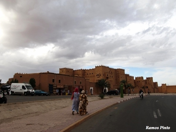 O Meu Zoom...de Marrocos, em 2014 - Página 2 6a8affbd-517e-46d4-b6b9-b6e7de08d1e9_zpsef590dce