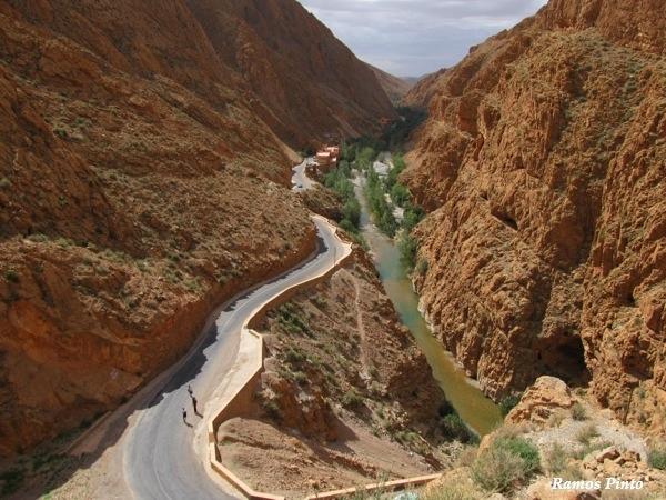 O Meu Zoom...de Marrocos, em 2014 - Página 2 783b9ac4-f836-49ff-8f7c-46bda1e71f6e_zps9c2864ad
