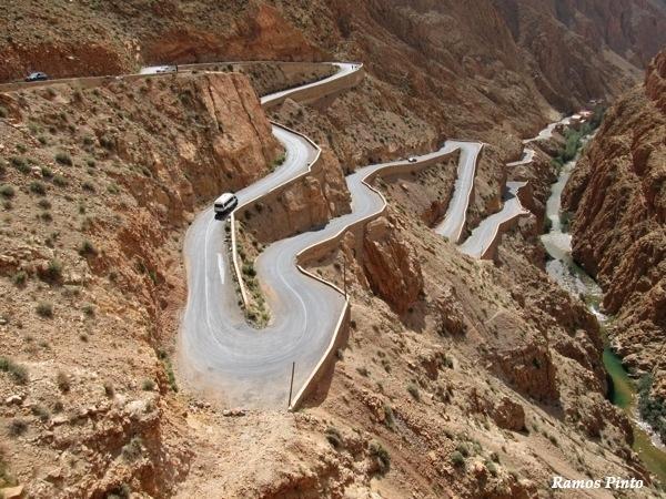 O Meu Zoom...de Marrocos, em 2014 - Página 2 786ad263-3baf-4c74-9c6d-6417dda20bed_zps8b6f56cf