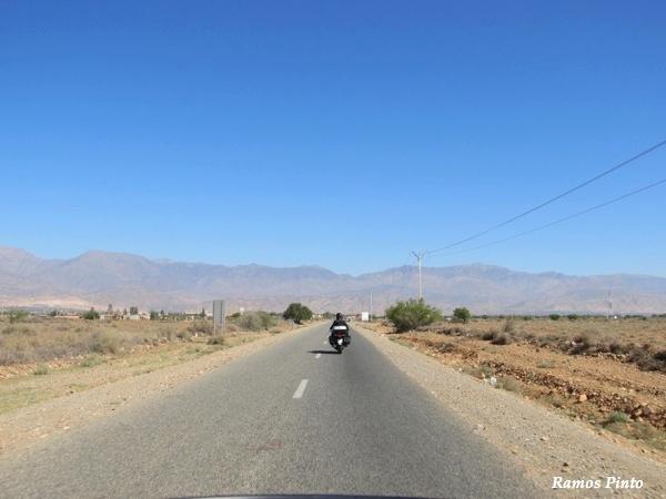 O Meu Zoom...de Marrocos, em 2014 - Página 2 7c119d14-94c1-43ee-8577-ee001d34b5b9_zps666dc212