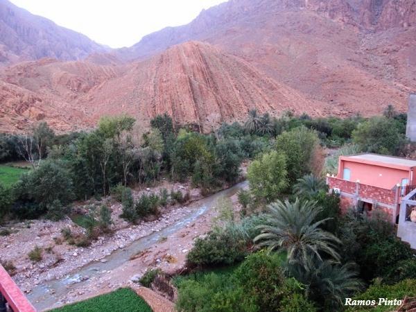 O Meu Zoom...de Marrocos, em 2014 - Página 2 804cfc26-ea86-498d-9476-8ce7e76c6a0d_zpsb88e01ed