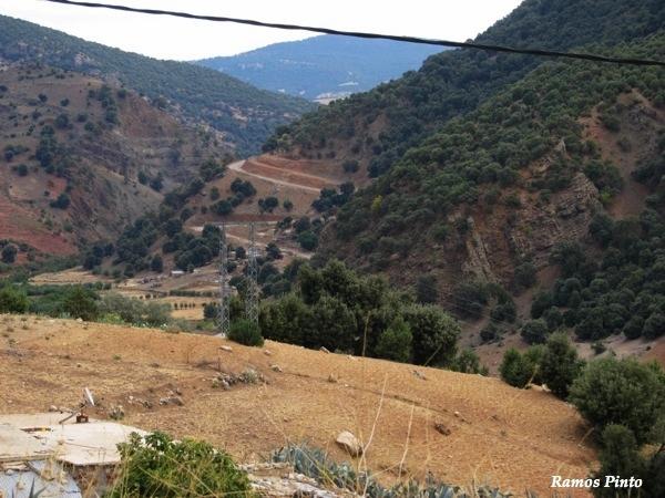 O Meu Zoom...de Marrocos, em 2014 - Página 2 84a84a8e-bd1b-412f-b519-1efbaa2383f1_zpsf37e5d14