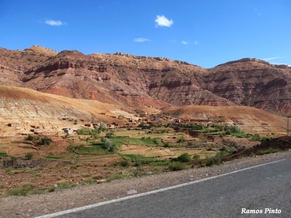 O Meu Zoom...de Marrocos, em 2014 - Página 2 8bad2a2e-7a2c-40be-ba06-7fa7658f10d1_zps94c487b0