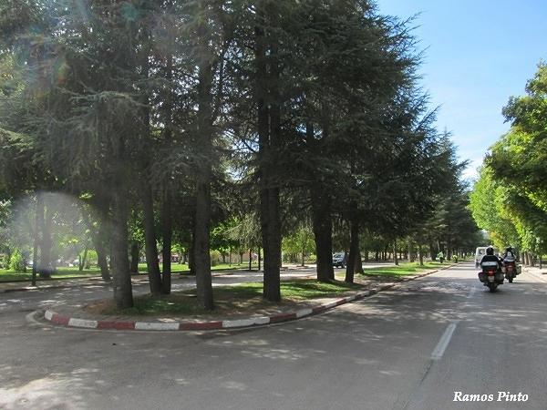 O Meu Zoom...de Marrocos, em 2014 - Página 2 8dc3846f-dbdc-40e3-9746-34284208b00d_zps85322e68