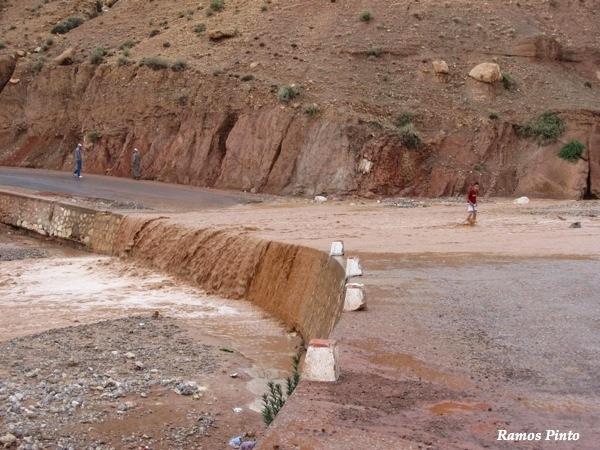 O Meu Zoom...de Marrocos, em 2014 - Página 2 97da7d39-649b-48e9-bf3a-b1b147dac2e6_zps487dc66d