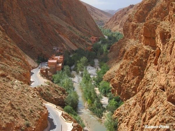O Meu Zoom...de Marrocos, em 2014 - Página 2 9bccc0e2-ef9f-4570-8238-528ac5fd18d9_zpseb6be1ea