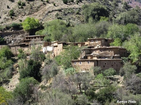 O Meu Zoom...de Marrocos, em 2014 - Página 2 9d2a2945-403c-4959-b4db-303adc8e1f27_zps638a237f