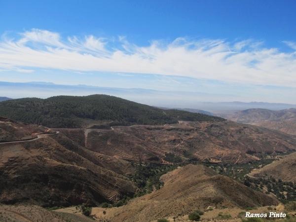 O Meu Zoom...de Marrocos, em 2014 - Página 2 9e4fb796-c1da-41a8-b5c5-6ba85a3c4e19_zps8632e457