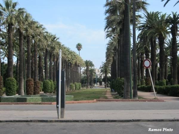 marrocos - O Meu Zoom...de Marrocos, em 2014 IMG_4463_new_zps1034a027
