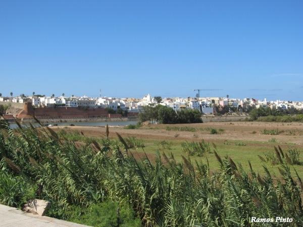 marrocos - O Meu Zoom...de Marrocos, em 2014 IMG_4482_new_zps41bdd1b5