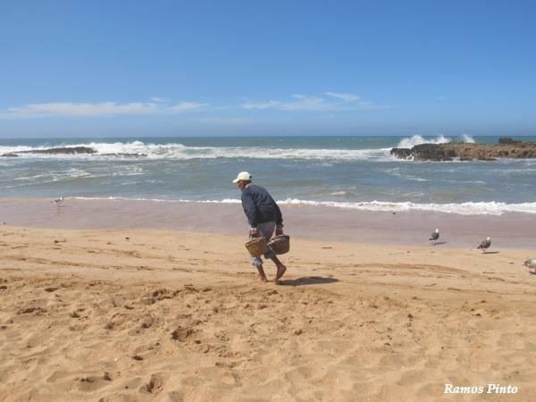 marrocos - O Meu Zoom...de Marrocos, em 2014 IMG_4587_new_zps5a42cdd3