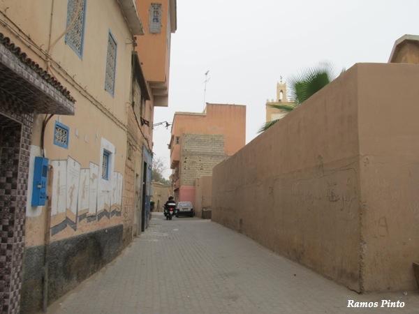 O Meu Zoom...de Marrocos, em 2014 - Página 2 IMG_4742_new_zps03828542