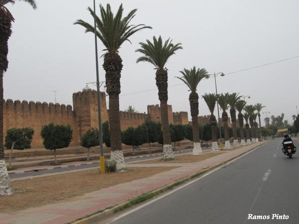 O Meu Zoom...de Marrocos, em 2014 - Página 2 IMG_4744_new_zps3a69c0a8