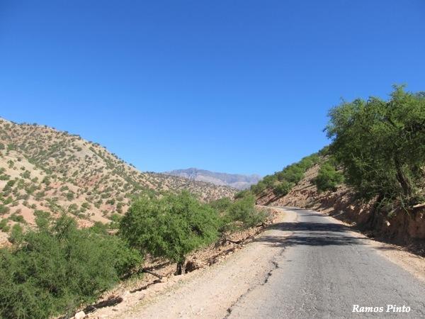 O Meu Zoom...de Marrocos, em 2014 - Página 2 IMG_4756_new_zpsc36dc4f1