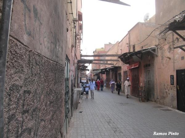 O Meu Zoom...de Marrocos, em 2014 - Página 2 IMG_4848_new_zps90544293