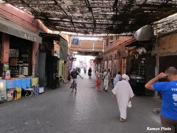 O Meu Zoom...de Marrocos, em 2014 - Página 2 IMG_4851_new_zps9f0eed6a