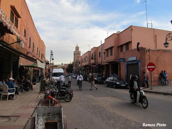 O Meu Zoom...de Marrocos, em 2014 - Página 2 IMG_4870_new_zps97559403