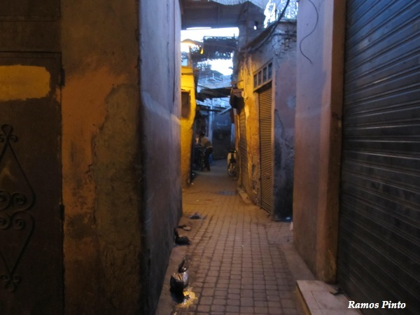 O Meu Zoom...de Marrocos, em 2014 - Página 2 IMG_4877_new_zps7865aad7