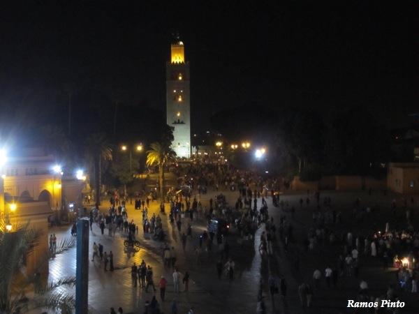 O Meu Zoom...de Marrocos, em 2014 - Página 2 IMG_4901_new_zps067ed691