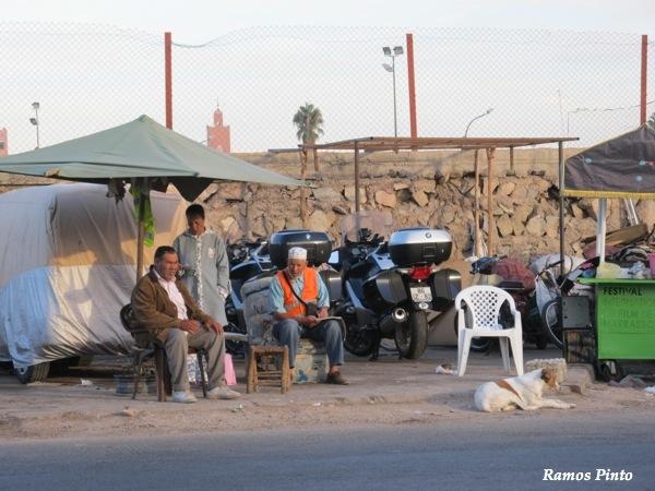 O Meu Zoom...de Marrocos, em 2014 - Página 2 IMG_4918_new_zps173408f0