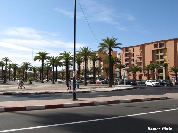 O Meu Zoom...de Marrocos, em 2014 - Página 2 IMG_4971_new_zpsda1c9ccf