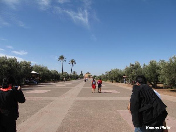 O Meu Zoom...de Marrocos, em 2014 - Página 2 IMG_4976_new_zps8bcc4065