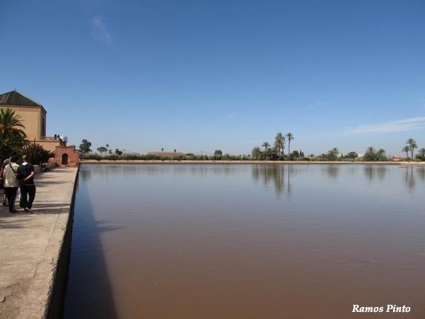 O Meu Zoom...de Marrocos, em 2014 - Página 2 IMG_4978_new_zpsddaf651d