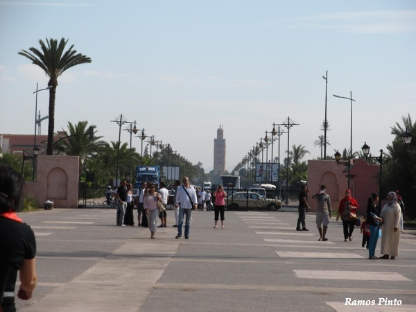 O Meu Zoom...de Marrocos, em 2014 - Página 2 IMG_4980_new_zpscd4f8c4a