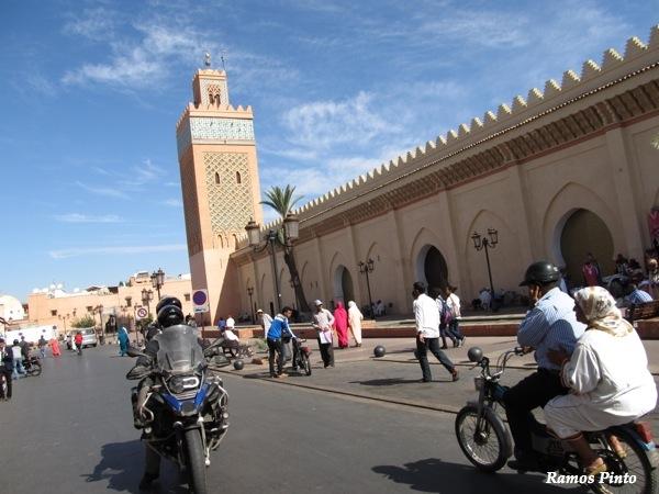 O Meu Zoom...de Marrocos, em 2014 - Página 2 IMG_4988_new_zpsd00d9b9e