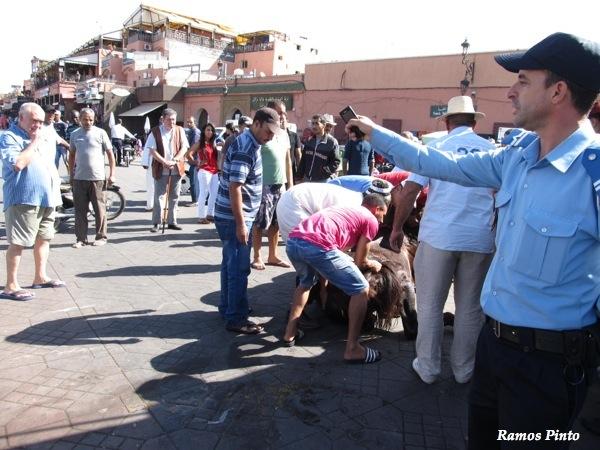 O Meu Zoom...de Marrocos, em 2014 - Página 2 IMG_4997_new_zpsdcb95072