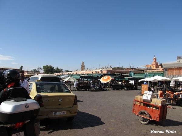 O Meu Zoom...de Marrocos, em 2014 - Página 2 IMG_4999_new_zps43d3bd1d